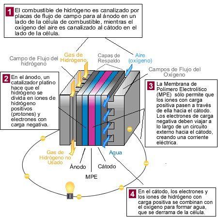 ¿Qué son las células de combustible?