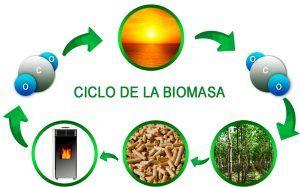 Qué es la energía de biomasa
