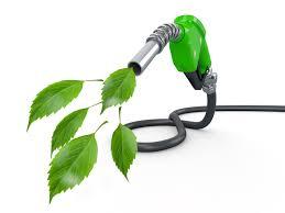 biocombustibles hoy