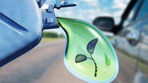 futuro para los biocombustibles