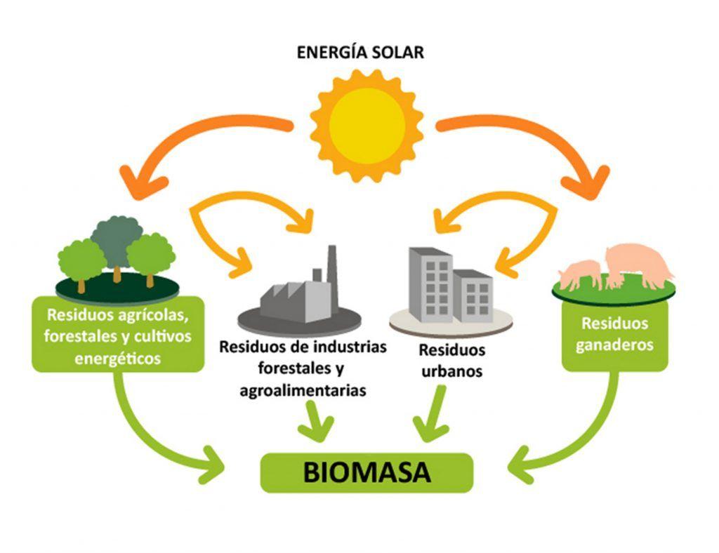 pros y contras biomasa