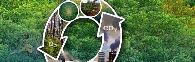monóxido de carbono