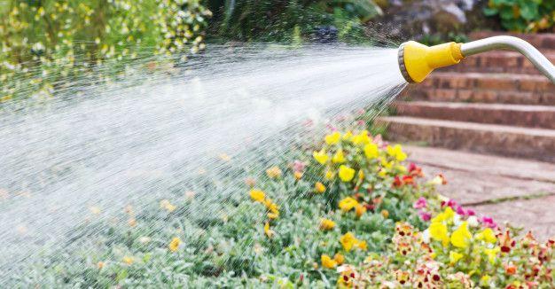 ahorrar agua fuera