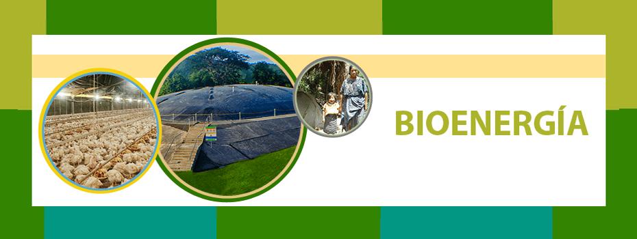 bioenergia para el comercio
