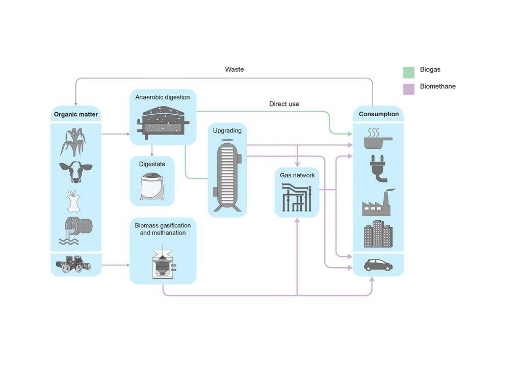 Caminos para biogás y biometano