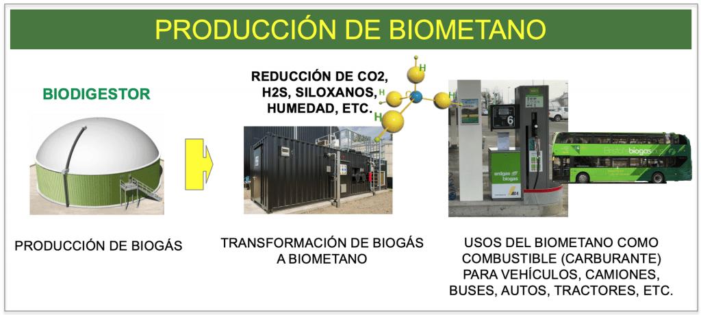produccion biogas y biometano